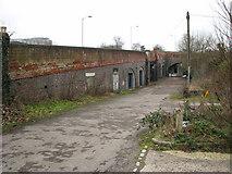 TG2407 : Lane alongside the railway bridge in Trowse by Evelyn Simak