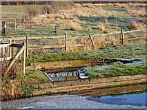 SO8690 : Overspill weir at Hinksford Lock, Staffordshire & Worcestershire Canal by P L Chadwick