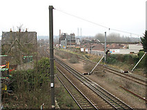 TG2407 : View across the Norwich to London railway line in Trowse by Evelyn Simak