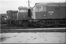 TQ2182 : Diesel locomotives at Old Oak Common depot by Rob Purvis