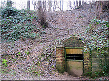 TG2707 : A woodland walk in Whitlingham Country Park - disused lime kiln by Evelyn Simak