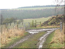 NZ1525 : Public Rights of Way junction east of Evenwood by peter robinson