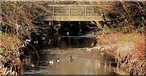 J3673 : Knock River footbridge, Belfast by Albert Bridge