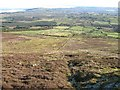 S3031 : Heathland and Fieldscape by kevin higgins