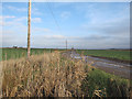 TL4289 : Track across Block Fen by Hugh Venables