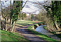 SO8692 : Wom Brook at Giggety in Wombourne, Staffordshire by Roger  Kidd