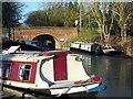 SU1561 : Boats at Pewsey Wharf by Maigheach-gheal