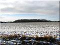 TM2796 : Snowy field west of Woodton Road by Evelyn Simak