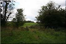 SJ7144 : Footpath from Wheel Green to Pewit Hall by Dave Dunford