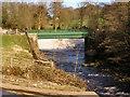 SJ9791 : River Etherow, bridge and weir by David Dixon