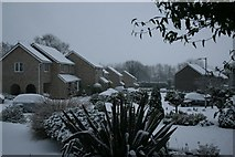 TG2105 : Housing estate, Eaton by Katy Walters