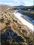 NY5206 : Crookdale Beck by Michael Graham