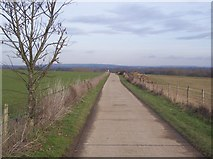 TQ5344 : National Cycle Route 12 and Eden Valley Walk heading to Killick's Bank by David Anstiss
