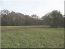TQ2255 : The edge of Banstead Heath in Walton by Stephen Craven