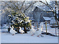 NY3558 : Geese In the snow at Kirkandrews on Eden by Tom Howe