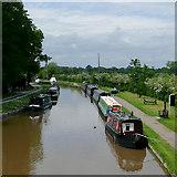 SJ6352 : Shropshire Union Canal near Nantwich, Cheshire by Roger  Kidd