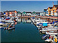 SX9980 : Exmouth Marina 2 by susie peek