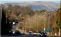 J3269 : The Milltown Road near Shaw's Bridge, Belfast by Albert Bridge