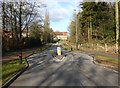 SP2566 : Traffic calming chicane on Charingworth Drive by David P Howard
