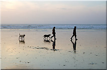SW5742 : Walking the dogs on Godrevy beach at low water by Andy F