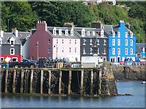 NM5055 : Waterfront buildings and jetty, Tobermory by David Martin
