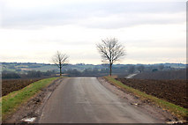 SP5162 : Looking south along the lane out of Flecknoe by Andy F
