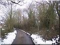 TQ8131 : Footpath junction near Dingleden Farm by David Anstiss