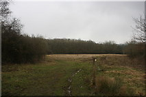 TQ4540 : Sussex Border Path near Clay's Wood (2) by N Chadwick