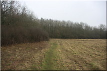 TQ4540 : Sussex Border Path along the edge of Clay's Wood by N Chadwick