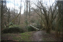 TQ4540 : Footbridge over an unnamed tributary of the River Medway by N Chadwick