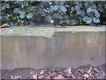 SJ3787 : Sefton Park - perimeter wall bench mark #3 by John S Turner