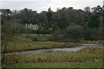 SW9741 : Caerhays Castle by Kate Jewell