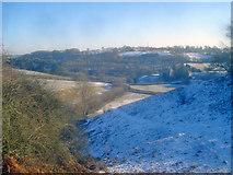 SO2755 : Flanks of Castle Twts by Trevor Rickard