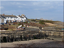 NU2520 : Craster: looking north by John Sutton