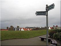 NT6779 : John Muir Way Dunbar by michael ely