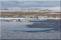 HP6312 : Frozen Haroldswick pool by Mike Pennington