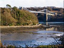 SH5571 : Menai Suspension Bridge and Belgian Promenade, from Church Island by David Dixon