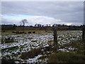 O0657 : Rural Landscape north County Dublin by C O'Flanagan