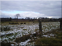 O0657 : Rural Landscape north County Dublin by C O'Flanagan
