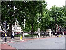 TQ2879 : Buckingham Palace Road, London SW1 by Christine Matthews