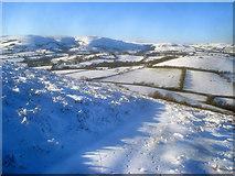 SO2456 : North side of Hergest Ridge by Trevor Rickard