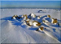 SO2556 : Summit cairn on Hergest Ridge by Trevor Rickard