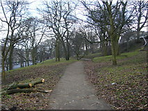 NT2674 : Middle path through London Road Gardens by kim traynor