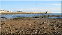 NO5603 : Anstruther harbour wall by Richard Webb