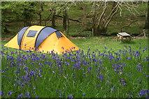 SH6129 : Dinas camping by Einir Pritchard