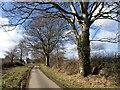 SX3280 : Approaching Trewarlett Cottage by Derek Harper