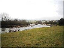 NZ1929 : River erosion near Bishop Auckland by Philip Barker