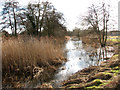 TL9484 : The River Thet west of Bridgham by Evelyn Simak