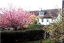 NM9609 : Cosy Cottage  Eredine Loch Awe by Susan Shepherd