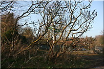 TQ5365 : Darent Valley Path signed off Lullingstone Lane by N Chadwick